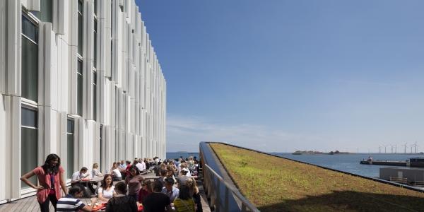 Grønne tage på en af Danmarks mest energivenlige bygninger